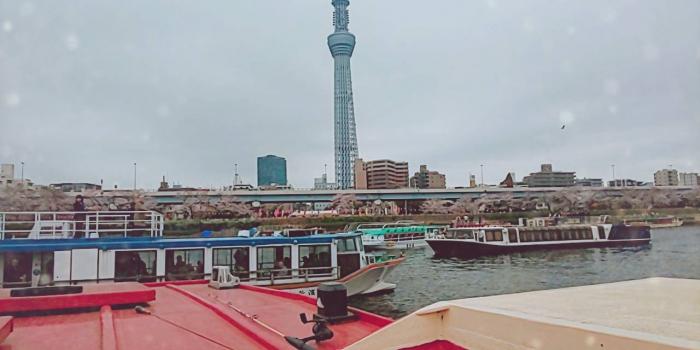 隅田川 屋形船でのお花見
